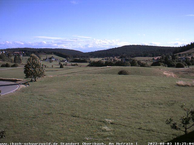Webcam Ibach im Schwarzwald